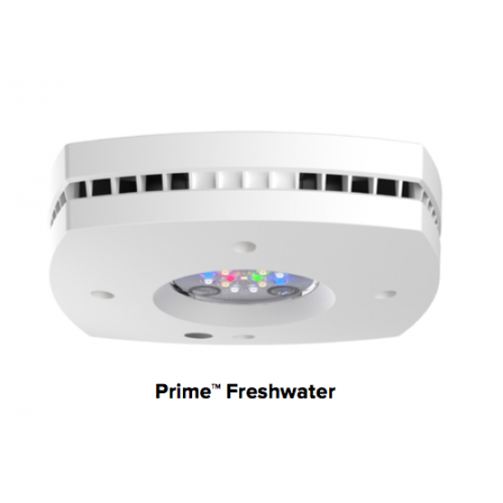 AI Prime HD Reef LED Light - WHITE