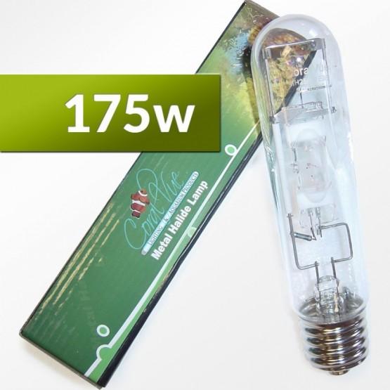10K CoralVue 175w Mogul Base Single Ended Bulbs