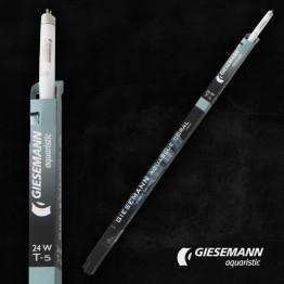 AquaBlue Coral Giesemann PowerChrome T5 Bulb