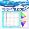 12K ReefLux 400w Mogul Base (SE) Bulbs