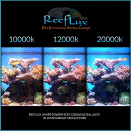 12K ReefLux 400w Mogul Base (SE) Bulbs
