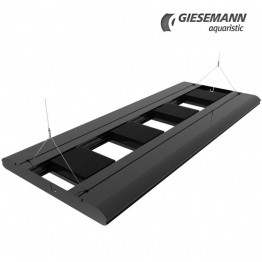 Giesemann Suspension Kit