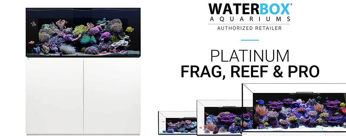 reeflabs_banner_aquariumbox