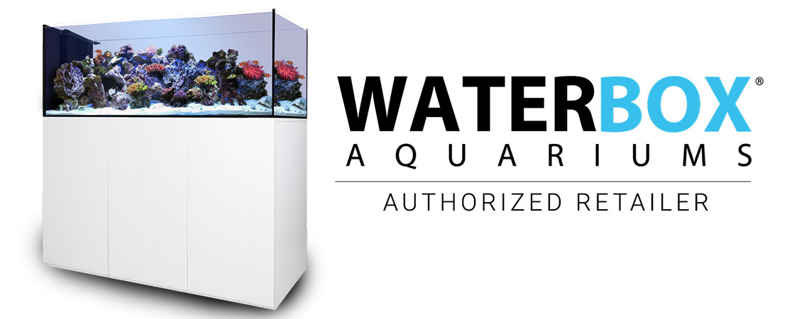reeflabs_banner_waterbox1